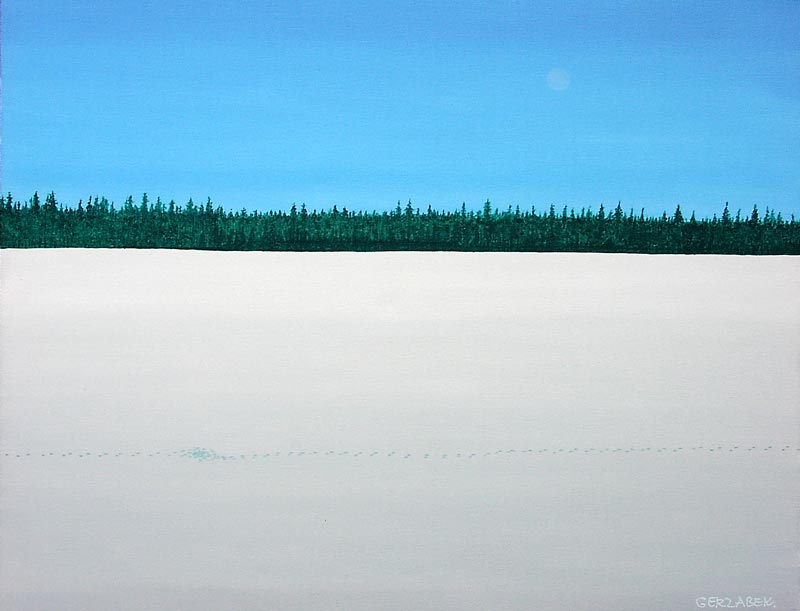 wolf tracks snow and blue sky usa winter landscape